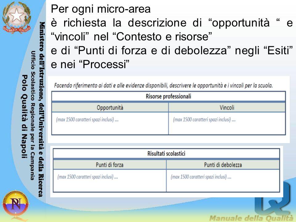 """Per ogni micro-area è richiesta la descrizione di """"opportunità """" e """"vincoli"""" nel """"Contesto e risorse"""" e di """"Punti di forza e di debolezza"""" negli """"Esit"""