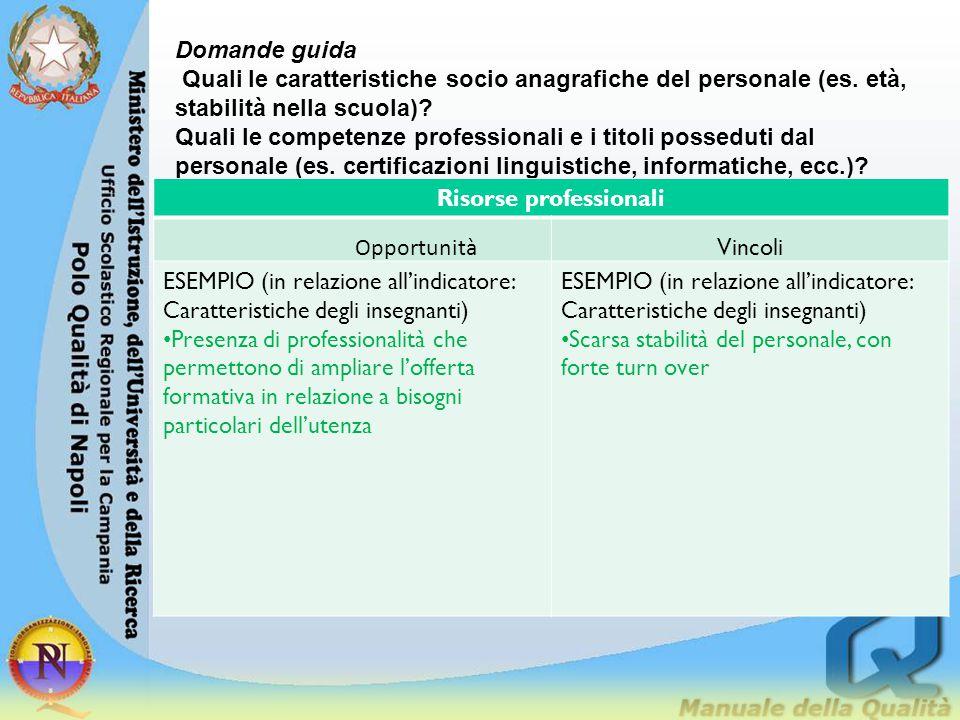 Domande guida Quali le caratteristiche socio anagrafiche del personale (es. età, stabilità nella scuola)? Quali le competenze professionali e i titoli