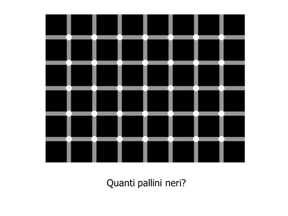 Quanti pallini neri?