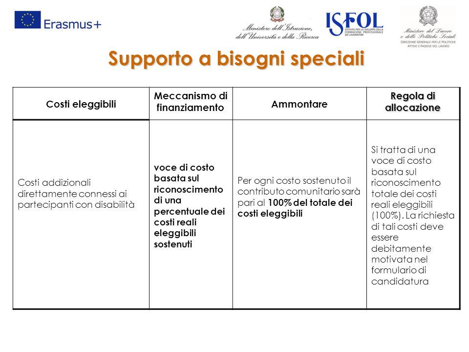 Costi eleggibili Meccanismo di finanziamento Ammontare Regola di allocazione Costi addizionali direttamente connessi ai partecipanti con disabilità vo