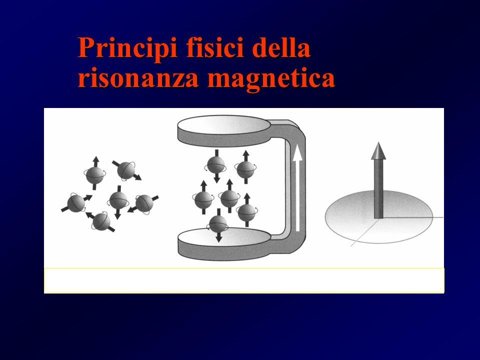 Principi fisici della risonanza magnetica