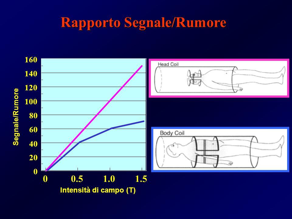 1.5 00.51.0 0 20 40 60 80 100 120 140 160 Intensità di campo (T) Segnale/Rumore No Chemical Shift Rapporto Segnale/Rumore