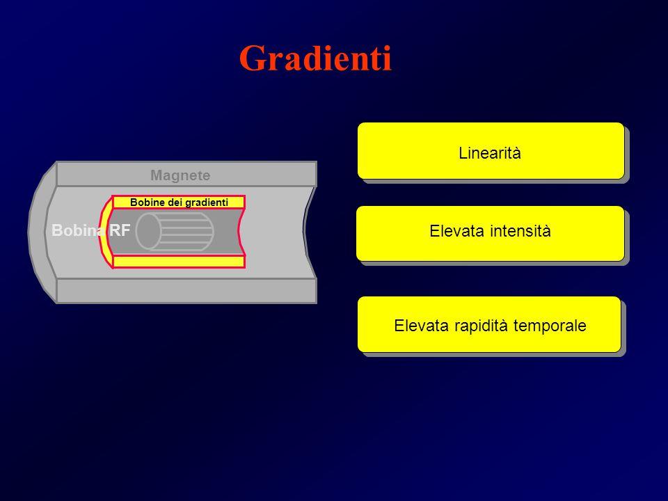 Magnete Bobine dei gradienti Bobina RF Linearità Elevata intensità Elevata rapidità temporale Gradienti