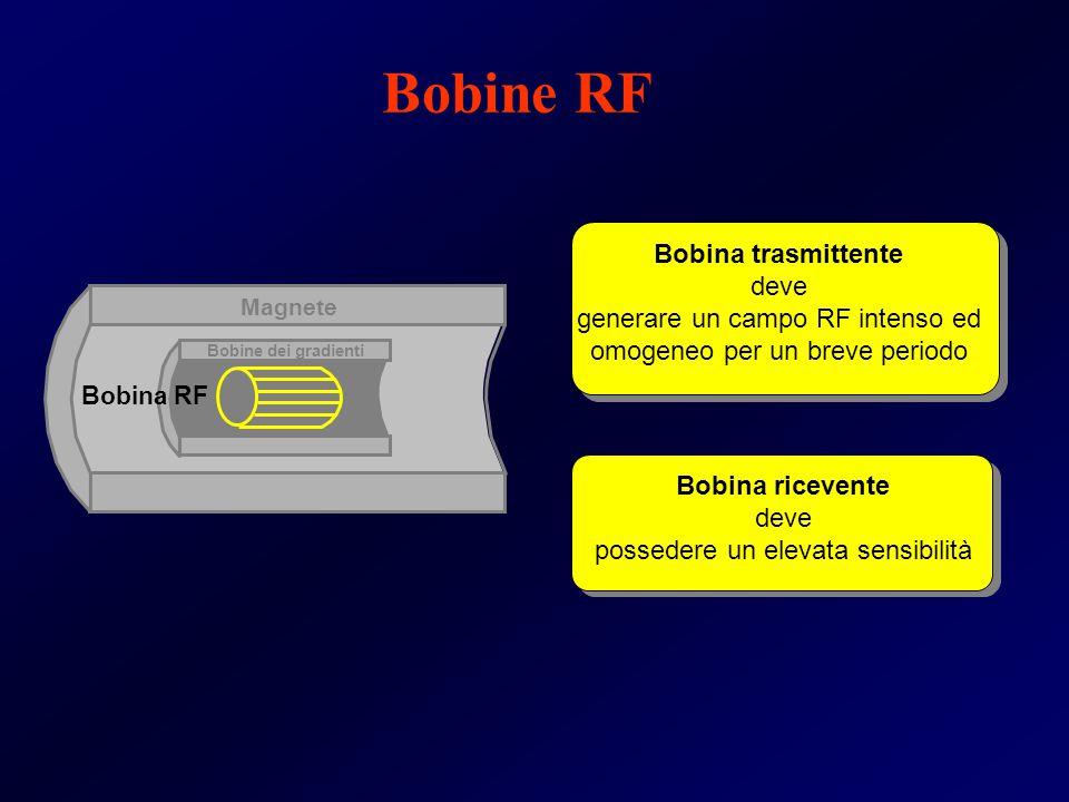 Magnete Bobine dei gradienti Bobina RF Bobina trasmittente deve generare un campo RF intenso ed omogeneo per un breve periodo Bobina ricevente deve po