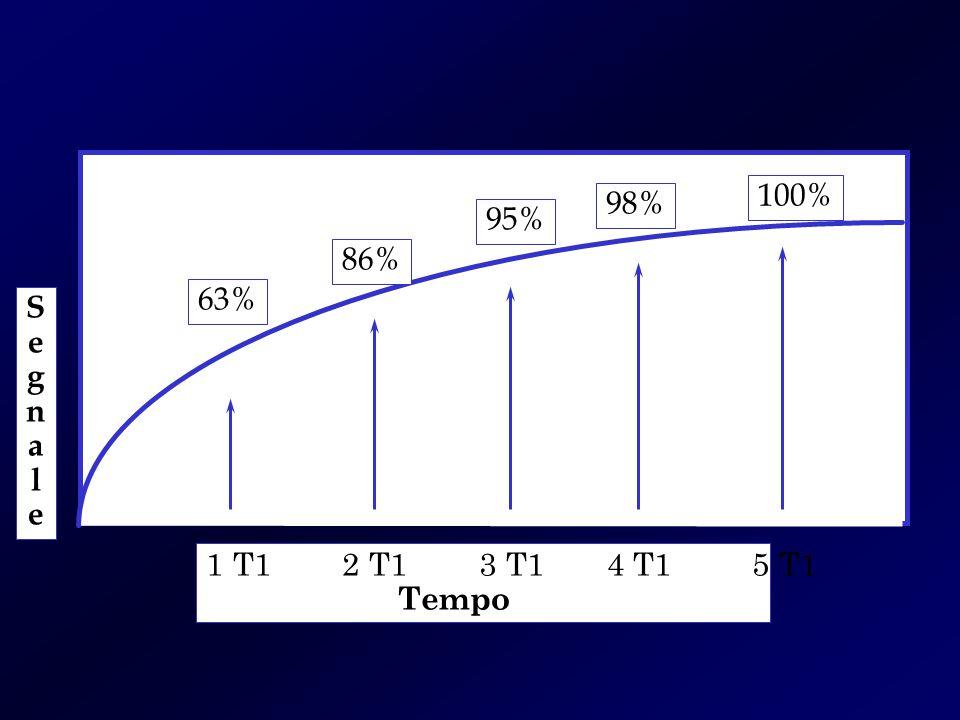 SegnaleSegnale 1 T1 2 T1 3 T1 4 T1 5 T1 Tempo 63% 86% 95% 98% 100%