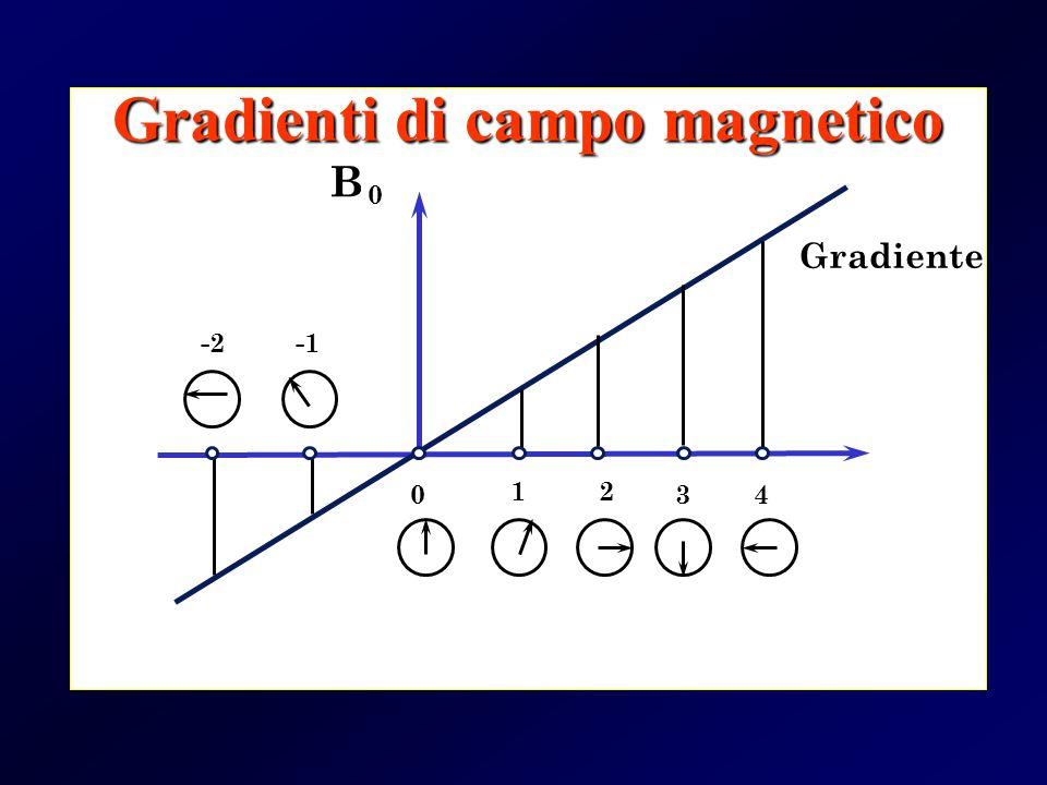 Gradiente B 0 340 12 -2 Gradienti di campo magnetico