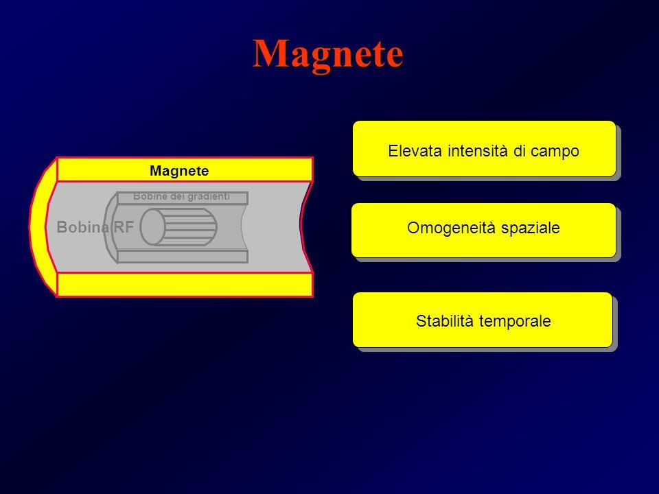 Magnete Elevata intensità di campo Omogeneità spaziale Bobina RF Bobine dei gradienti Stabilità temporale Magnete
