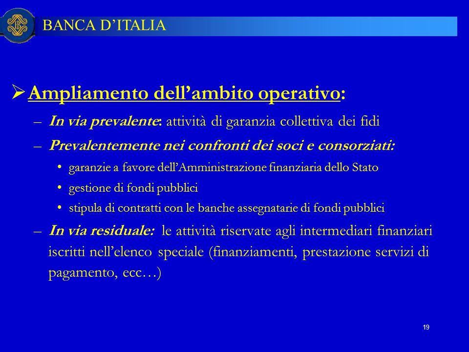 BANCA D'ITALIA 19  Ampliamento dell'ambito operativo: –In via prevalente: attività di garanzia collettiva dei fidi –Prevalentemente nei confronti dei