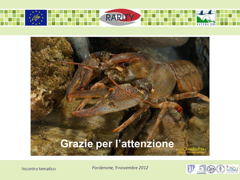 Incontro tematico Pordenone, 9 novembre 2012 Grazie per l'attenzione