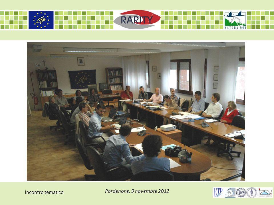 Incontro tematico Pordenone, 9 novembre 2012