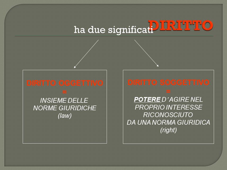 ha due significati DIRITTO OGGETTIVO = INSIEME DELLE NORME GIURIDICHE (law) DIRITTO SOGGETTIVO = POTERE D' AGIRE NEL PROPRIO INTERESSE RICONOSCIUTO DA