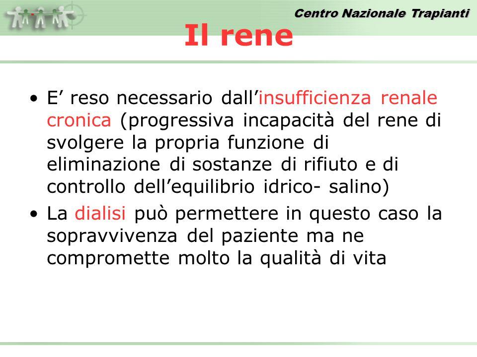 Centro Nazionale Trapianti Donatori procurati PMP – Anni 2002/2008 FONTE DATI: Dati Reports CIR 1045106212201213130512871286