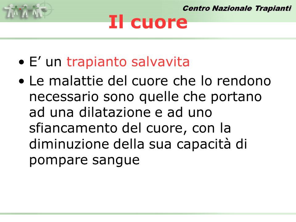 Centro Nazionale Trapianti Confronto Donatori Procurati PMP 2007 vs 2008 FONTE DATI: Dati Reports CIR Anno 2007 22,6 22,6 Anno 2008* 22,6 22,6