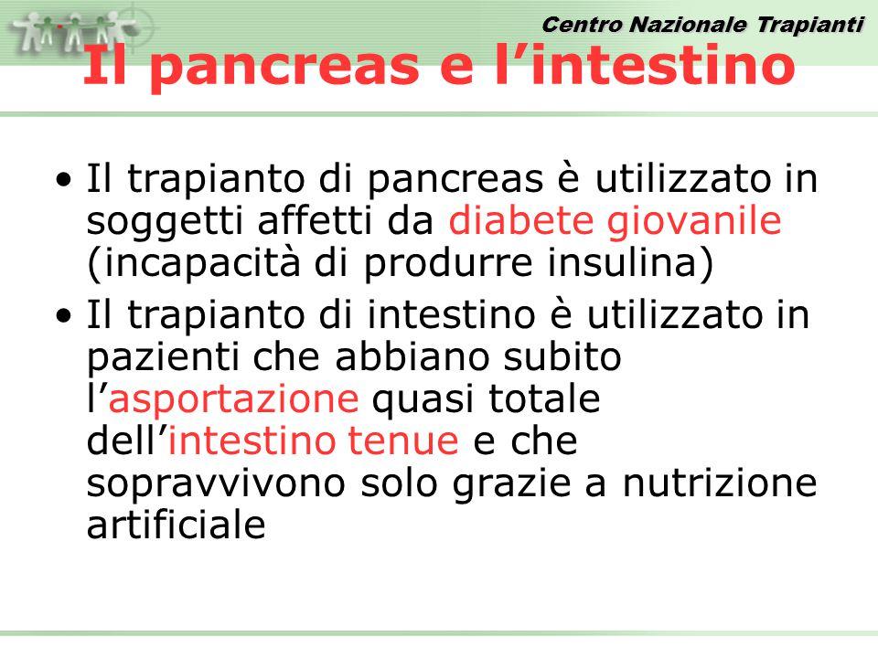 Centro Nazionale Trapianti Il pancreas e l'intestino Il trapianto di pancreas è utilizzato in soggetti affetti da diabete giovanile (incapacità di pro