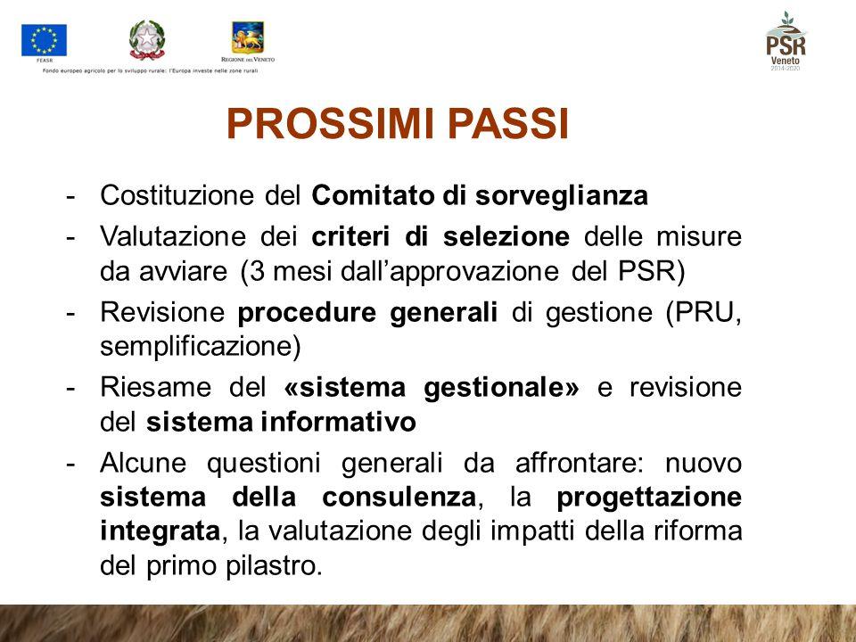 PROSSIMI PASSI -Costituzione del Comitato di sorveglianza -Valutazione dei criteri di selezione delle misure da avviare (3 mesi dall'approvazione del