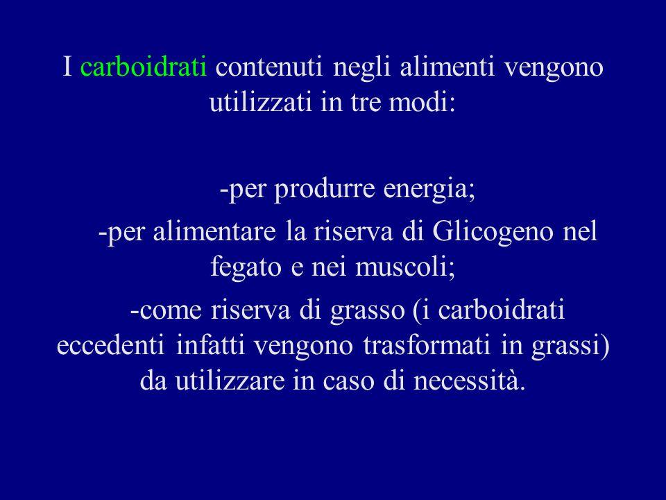I carboidrati contenuti negli alimenti vengono utilizzati in tre modi: -per produrre energia; -per alimentare la riserva di Glicogeno nel fegato e nei muscoli; -come riserva di grasso (i carboidrati eccedenti infatti vengono trasformati in grassi) da utilizzare in caso di necessità.
