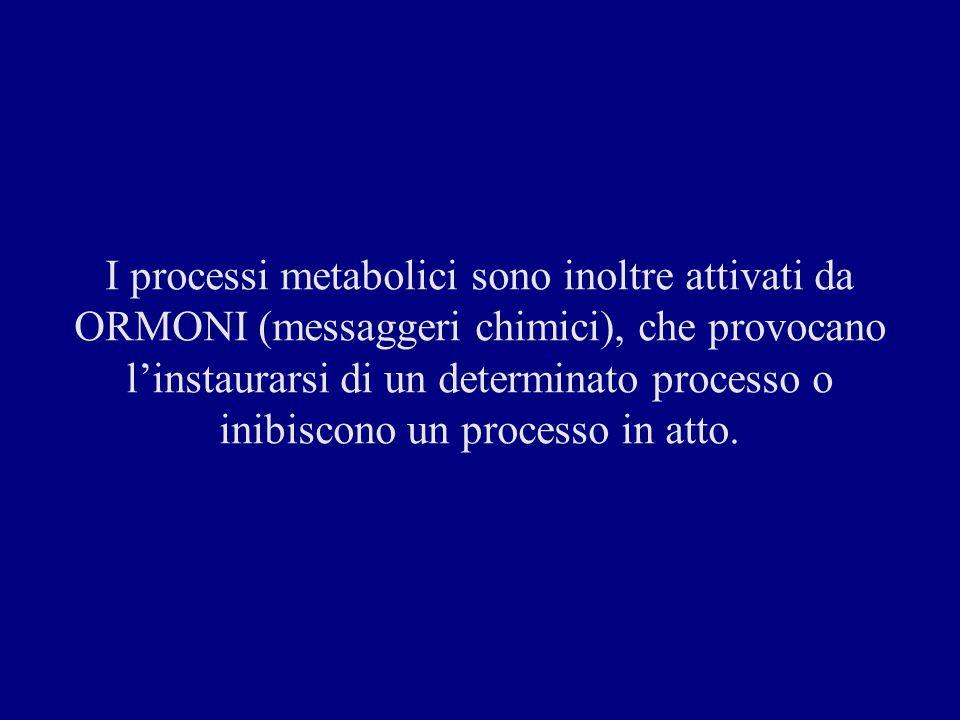 I processi metabolici sono inoltre attivati da ORMONI (messaggeri chimici), che provocano l'instaurarsi di un determinato processo o inibiscono un processo in atto.