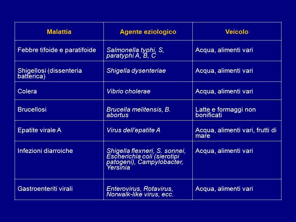MalattiaAgente eziologicoVeicolo Febbre tifoide e paratifoide Salmonella typhi, S, paratyphi A, B, C Acqua, alimenti vari Shigellosi (dissenteria batterica) Shigella dysenteriaeAcqua, alimenti vari ColeraVibrio choleraeAcqua, alimenti vari Brucellosi Brucella melitensis, B.