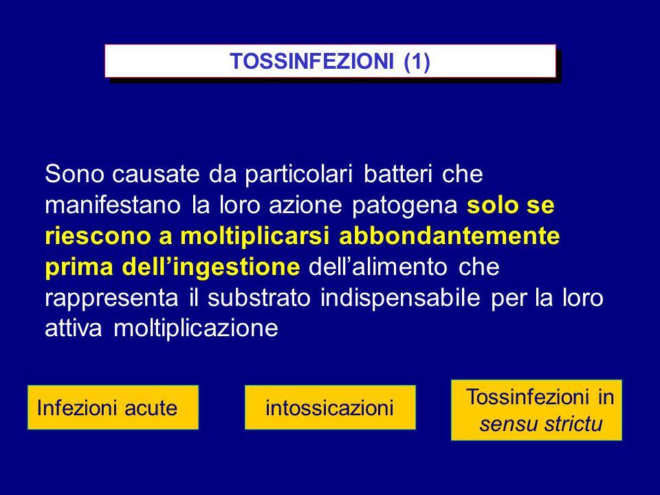 TOSSINFEZIONI (1) Infezioni acuteintossicazioni Tossinfezioni in sensu strictu Sono causate da particolari batteri che manifestano la loro azione patogena solo se riescono a moltiplicarsi abbondantemente prima dell'ingestione dell'alimento che rappresenta il substrato indispensabile per la loro attiva moltiplicazione
