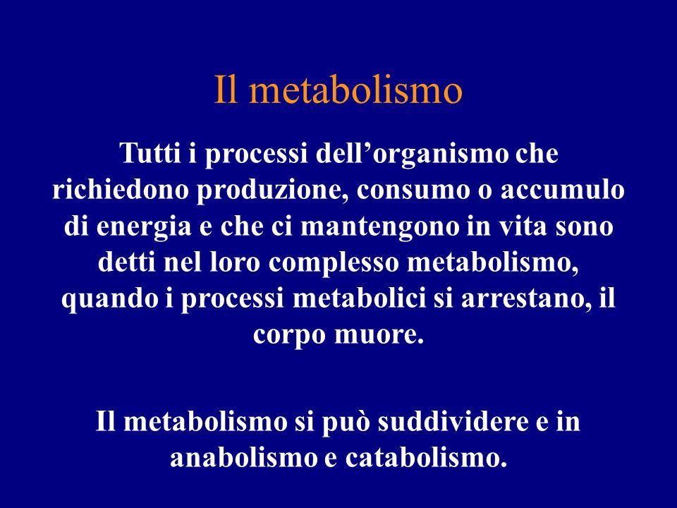 ingestione di un alimento contaminato CAUSE DIRETTE (1)