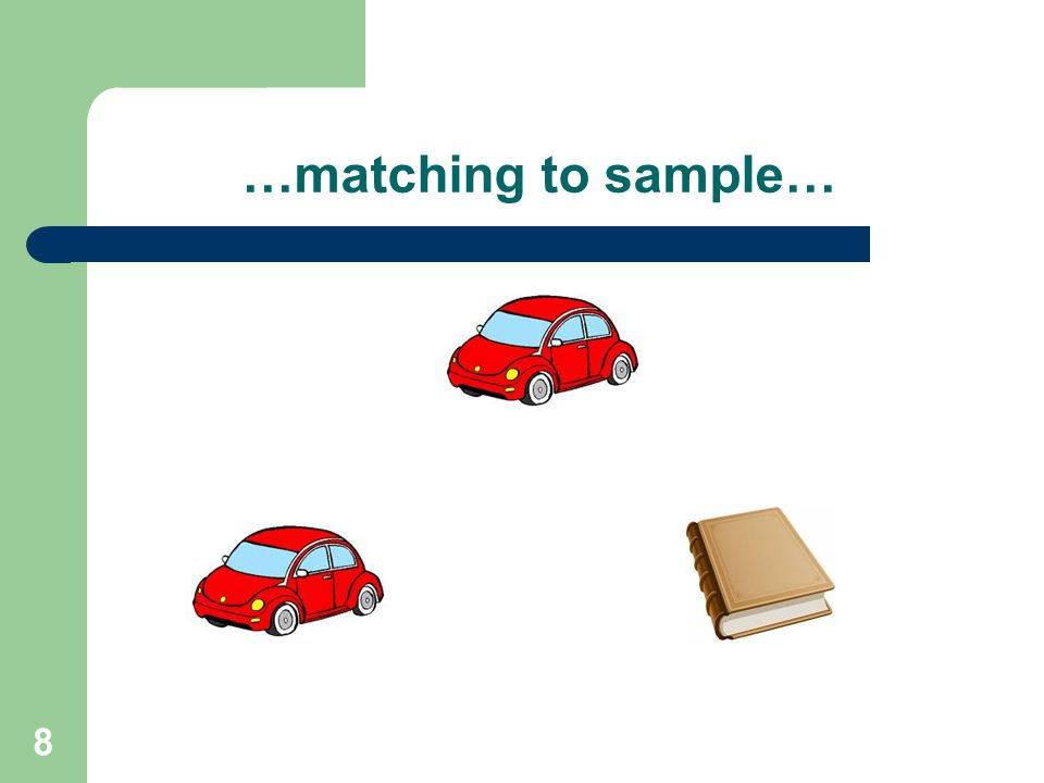 …matching to sample… 8