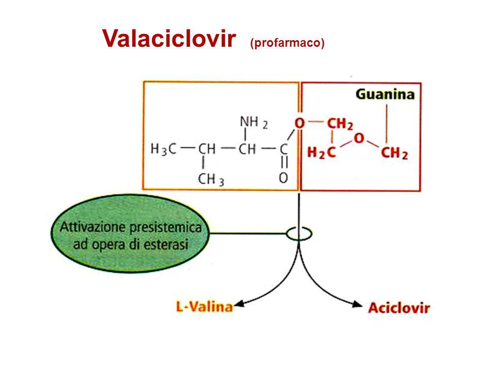 Altri farmaci nelle infezioni erpetiche Foscarnet (CMV, iv) Idoxuridina (cheratite HS) * Fomivirsen (retinite CMV) * * uso topico