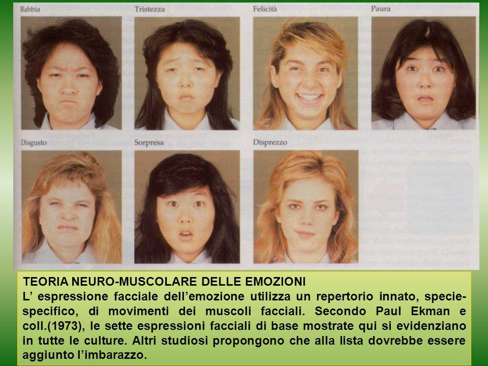 TEORIA NEURO-MUSCOLARE DELLE EMOZIONI L' espressione facciale dell'emozione utilizza un repertorio innato, specie- specifico, di movimenti dei muscoli