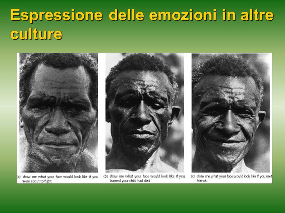 Espressione delle emozioni in altre culture