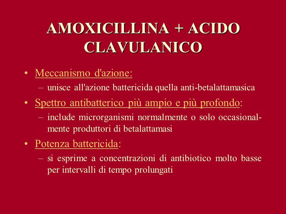 AMOXICILLINA + ACIDO CLAVULANICO Meccanismo d'azione: –unisce all'azione battericida quella anti-betalattamasica Spettro antibatterico più ampio e più