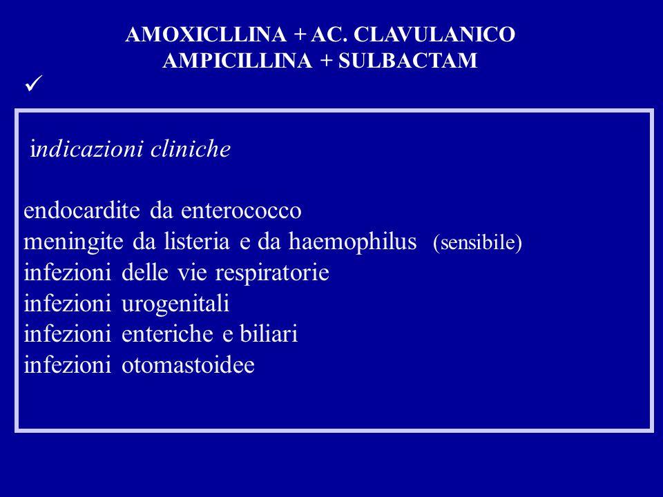 indicazioni cliniche endocardite da enterococco meningite da listeria e da haemophilus (sensibile) infezioni delle vie respiratorie infezioni urogenitali infezioni enteriche e biliari infezioni otomastoidee AMOXICLLINA + AC.