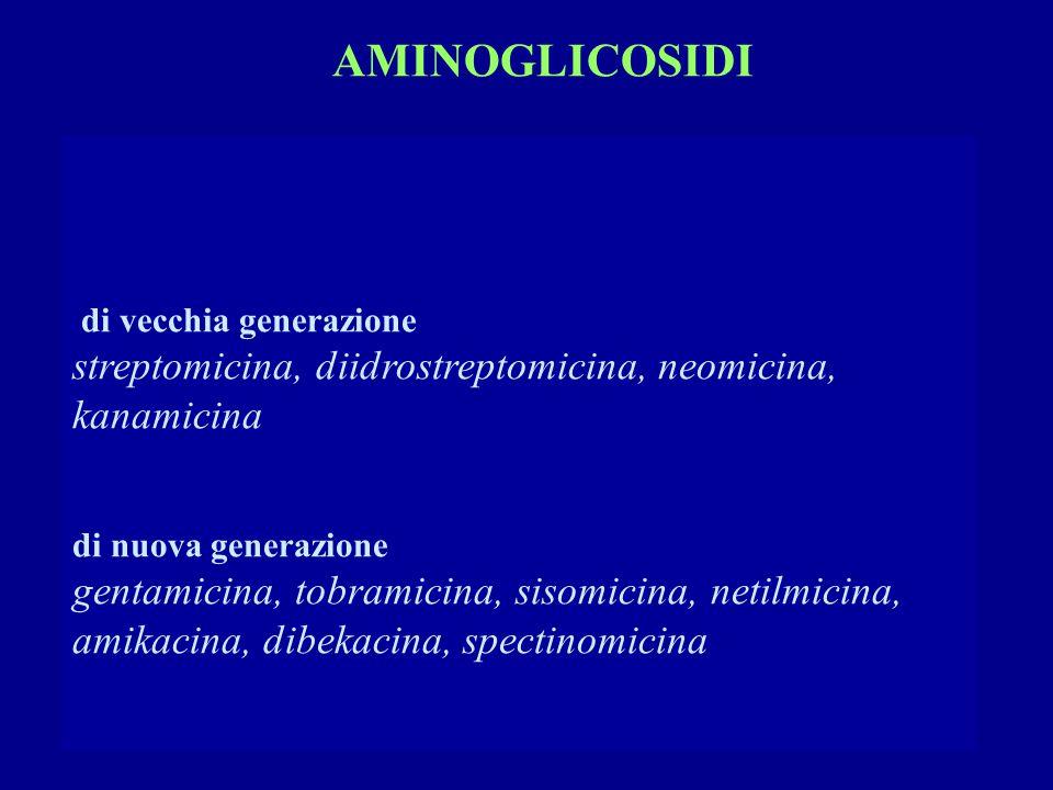 di vecchia generazione streptomicina, diidrostreptomicina, neomicina, kanamicina di nuova generazione gentamicina, tobramicina, sisomicina, netilmicina, amikacina, dibekacina, spectinomicina AMINOGLICOSIDI