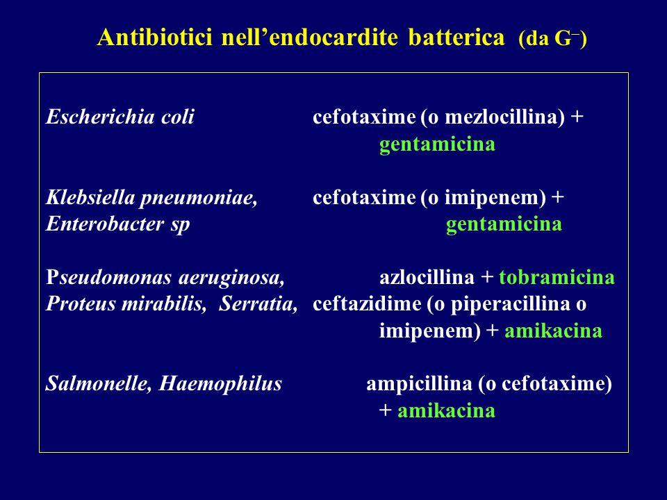 Escherichia coli cefotaxime (o mezlocillina) + gentamicina Klebsiella pneumoniae, cefotaxime (o imipenem) + Enterobacter sp gentamicina Pseudomonas aeruginosa, azlocillina + tobramicina Proteus mirabilis, Serratia, ceftazidime (o piperacillina o imipenem) + amikacina Salmonelle, Haemophilus ampicillina (o cefotaxime) + amikacina Antibiotici nell'endocardite batterica (da G  )