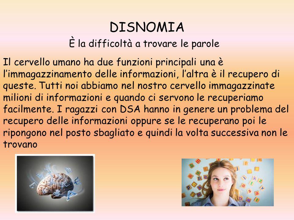 DISNOMIA È la difficoltà a trovare le parole Il cervello umano ha due funzioni principali una è l'immagazzinamento delle informazioni, l'altra è il re