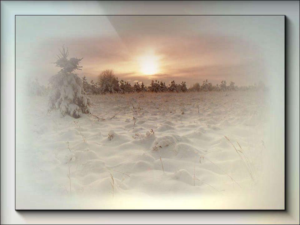 Il vento vola con ali di neve e sparge sui campi un velo di candore. A Russo