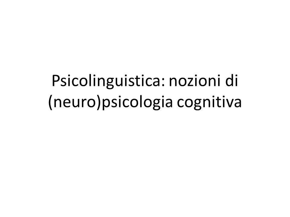 Psicolinguistica: nozioni di (neuro)psicologia cognitiva