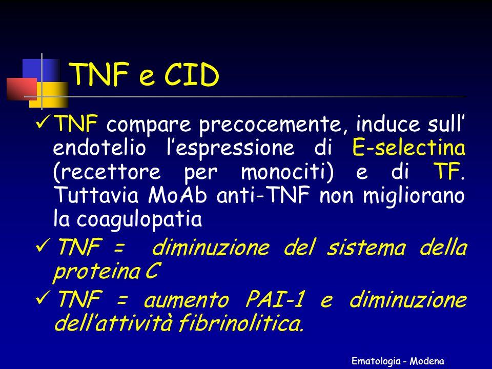 Ematologia - Modena TNF e CID TNF compare precocemente, induce sull' endotelio l'espressione di E-selectina (recettore per monociti) e di TF. Tuttavia