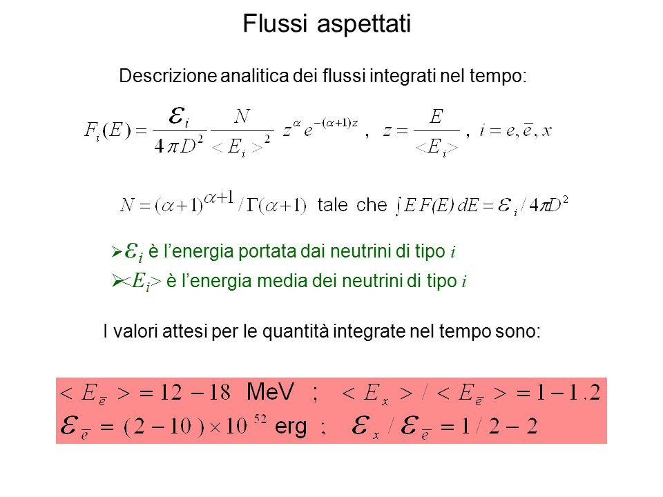 Flussi aspettati Descrizione analitica dei flussi integrati nel tempo:  ε i è l'energia portata dai neutrini di tipo i  è l'energia media dei neutri