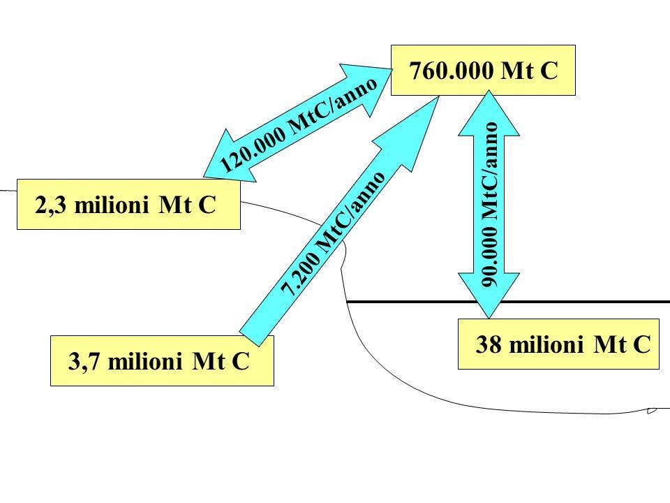 760.000 Mt C38 milioni Mt C2,3 milioni Mt C3,7 milioni Mt C 90.000 MtC/anno 120.000 MtC/anno 7.200 MtC/anno