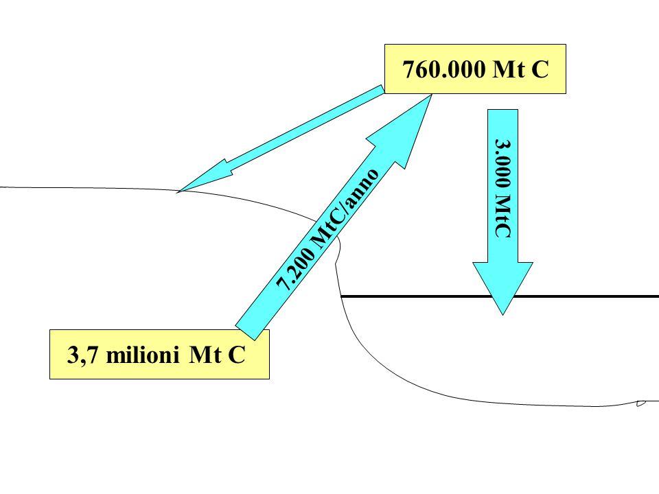 760.000 Mt C3,7 milioni Mt C 7.200 MtC/anno 3.000 MtC