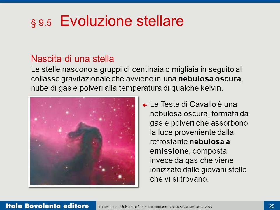 T. Cavattoni - l'Universo età 13,7 miliardi di anni - © Italo Bovolenta editore 2010 25 § 9.5 Evoluzione stellare Nascita di una stella Le stelle nasc