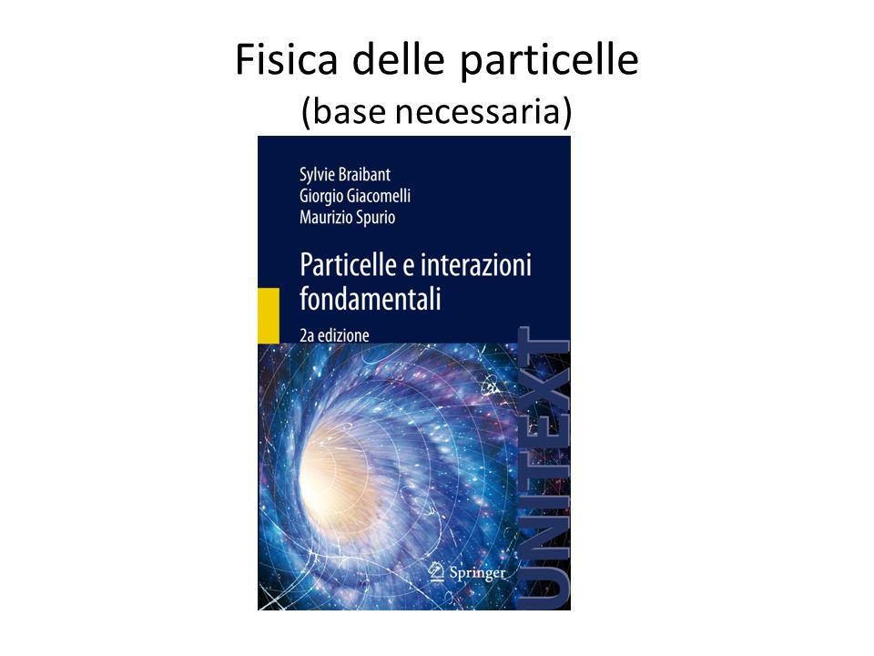 Fisica delle particelle (base necessaria)