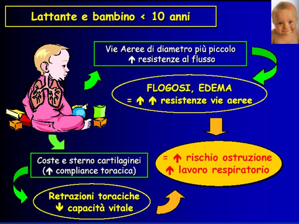 Focalizzeremo l'attenzione su: Sindromi Ostruttive Asma bronchiale Sindromi Restrittive ARDS Sindromi ostruttive e secondariamente restrittive Bronchiolite