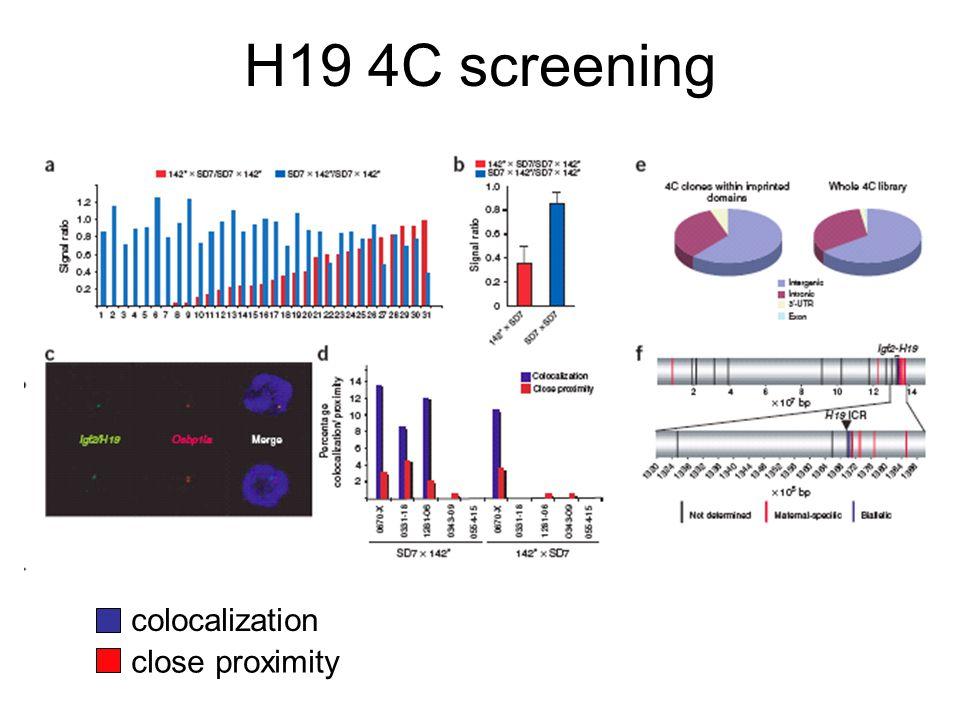 H19 4C screening colocalization close proximity