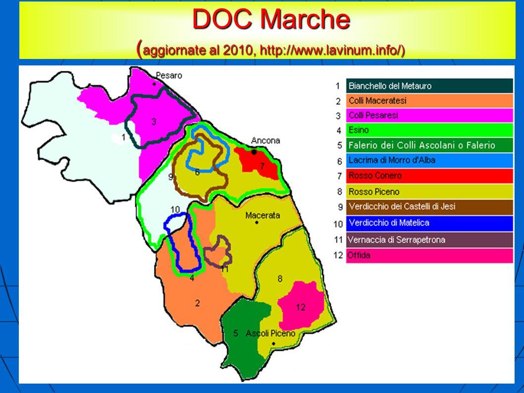 DOC Marche ( aggiornate al 2010, http://www.lavinum.info/) DOC Marche ( aggiornate al 2010, http://www.lavinum.info/)