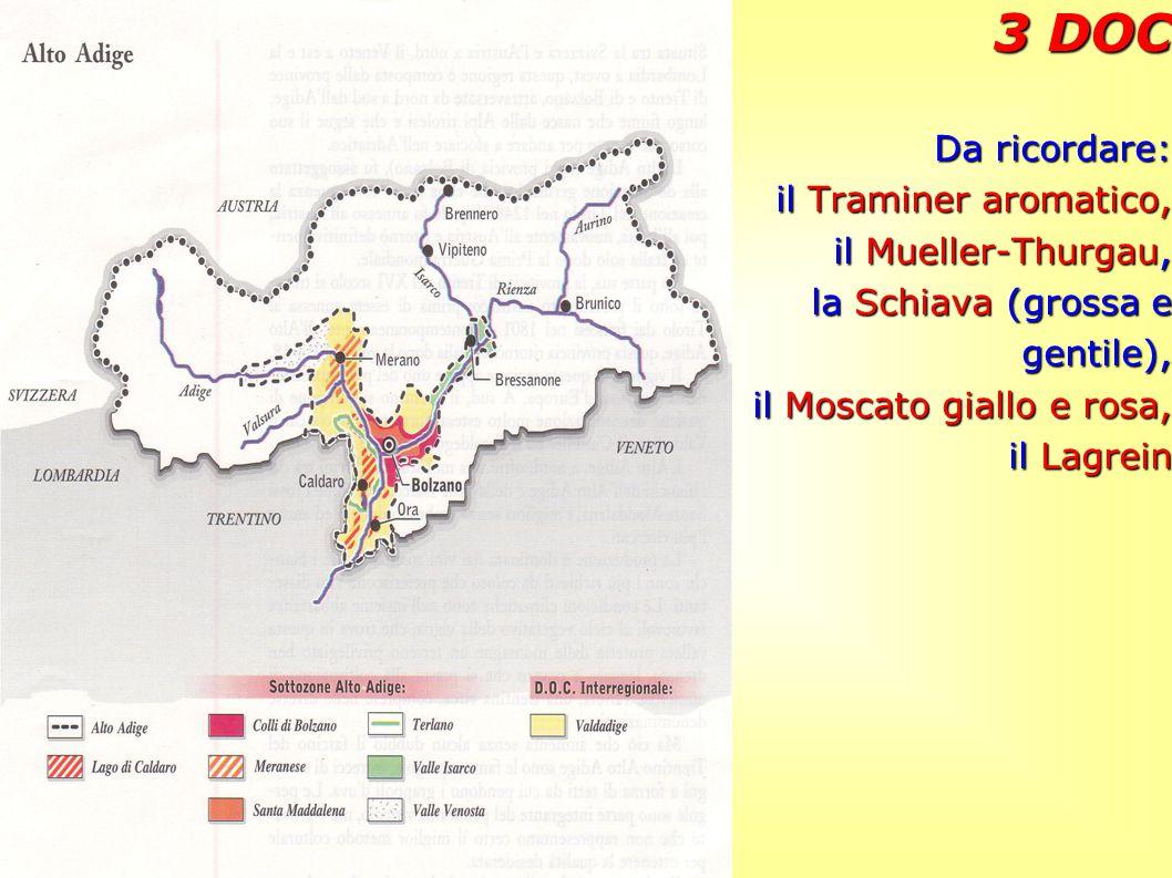3 DOC Da ricordare: il Traminer aromatico, il Mueller-Thurgau, la Schiava (grossa e gentile), il Moscato giallo e rosa, il Lagrein