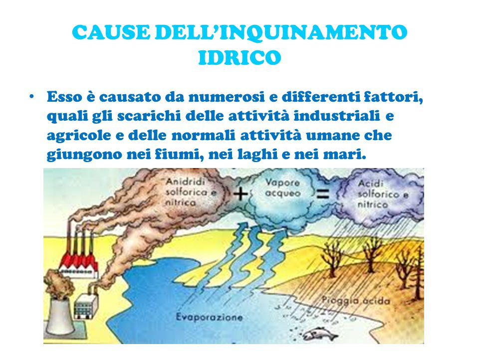 CAUSE DELL'INQUINAMENTO IDRICO Esso è causato da numerosi e differenti fattori, quali gli scarichi delle attività industriali e agricole e delle normali attività umane che giungono nei fiumi, nei laghi e nei mari.