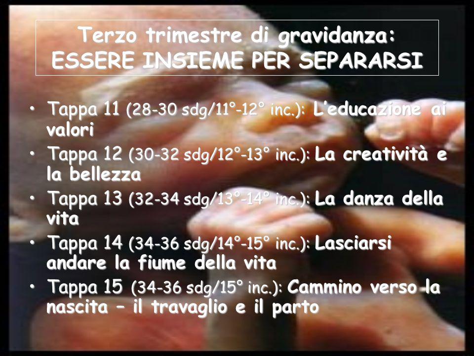 Terzo trimestre di gravidanza: ESSERE INSIEME PER SEPARARSI Tappa 11 (28-30 sdg/11°-12° inc.): L'educazione ai valoriTappa 11 (28-30 sdg/11°-12° inc.): L'educazione ai valori Tappa 12 (30-32 sdg/12°-13° inc.): La creatività e la bellezzaTappa 12 (30-32 sdg/12°-13° inc.): La creatività e la bellezza Tappa 13 (32-34 sdg/13°-14° inc.): La danza della vitaTappa 13 (32-34 sdg/13°-14° inc.): La danza della vita Tappa 14 (34-36 sdg/14°-15° inc.): Lasciarsi andare la fiume della vitaTappa 14 (34-36 sdg/14°-15° inc.): Lasciarsi andare la fiume della vita Tappa 15 (34-36 sdg/15° inc.): Cammino verso la nascita – il travaglio e il partoTappa 15 (34-36 sdg/15° inc.): Cammino verso la nascita – il travaglio e il parto