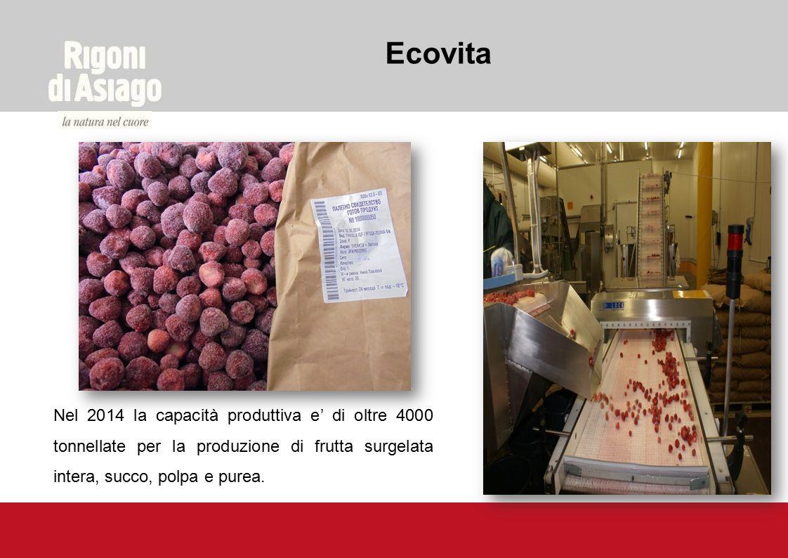 Nel 2014 la capacità produttiva e' di oltre 4000 tonnellate per la produzione di frutta surgelata intera, succo, polpa e purea. Ecovita