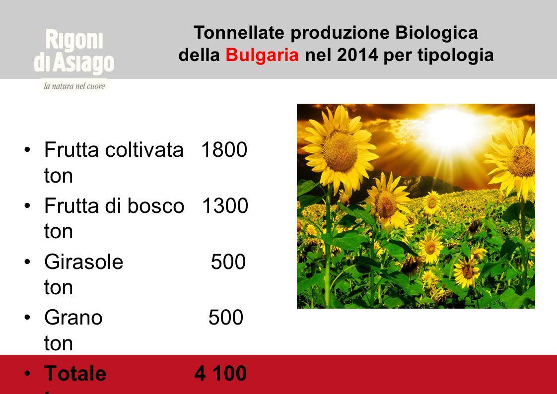 Tonnellate produzione Biologica della Bulgaria nel 2014 per tipologia Frutta coltivata 1800 ton Frutta di bosco 1300 ton Girasole 500 ton Grano 500 to