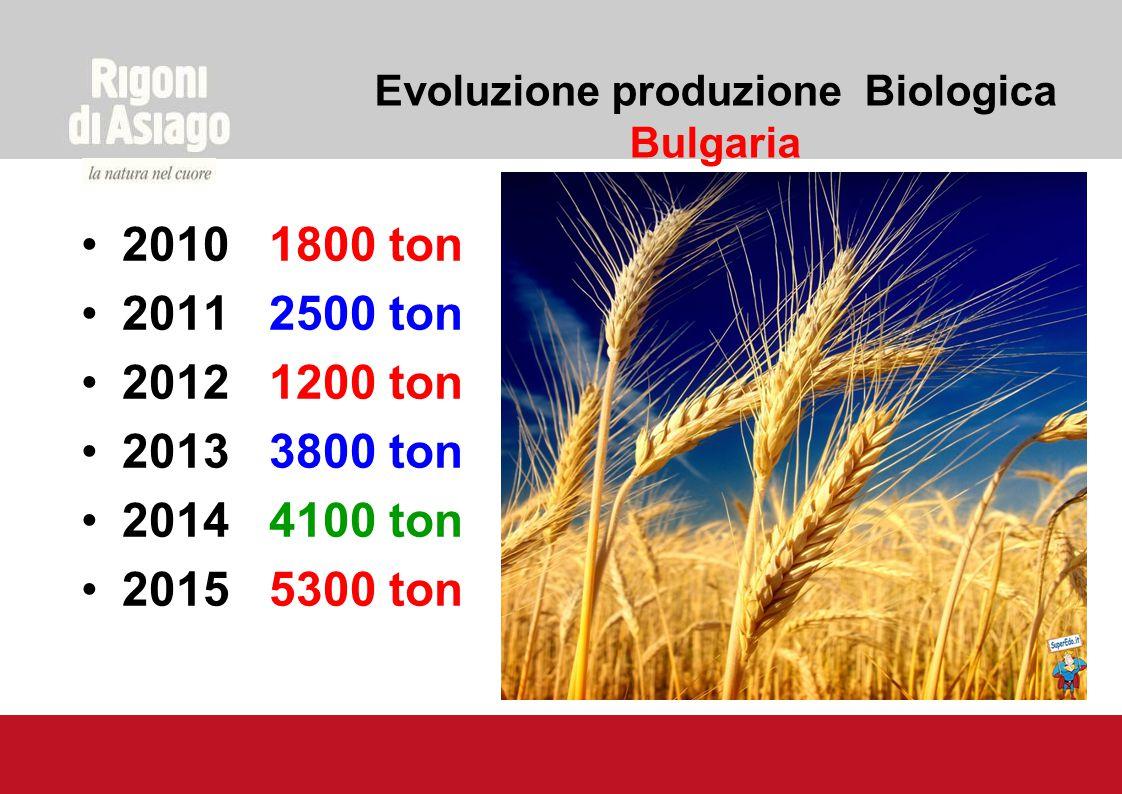 Evoluzione produzione Biologica Bulgaria 2010 1800 ton 2011 2500 ton 2012 1200 ton 2013 3800 ton 2014 4100 ton 2015 5300 ton